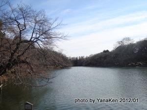 Inokashira_ike201101a